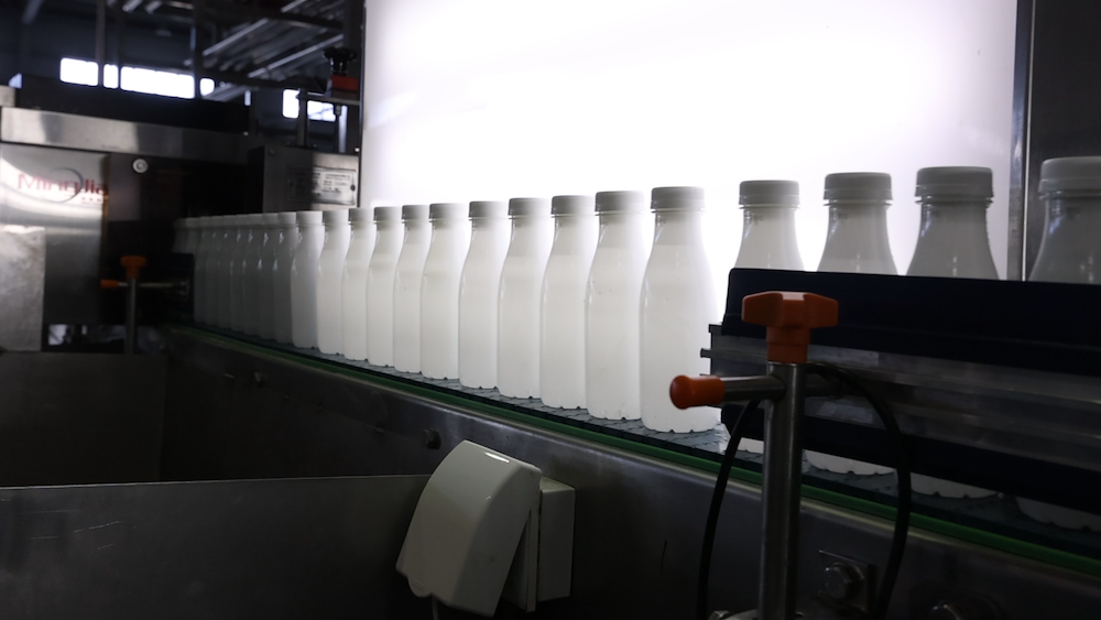 Packaging System - 2