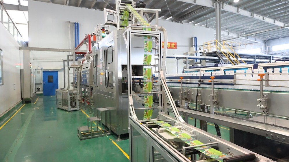 Packaging System - 3